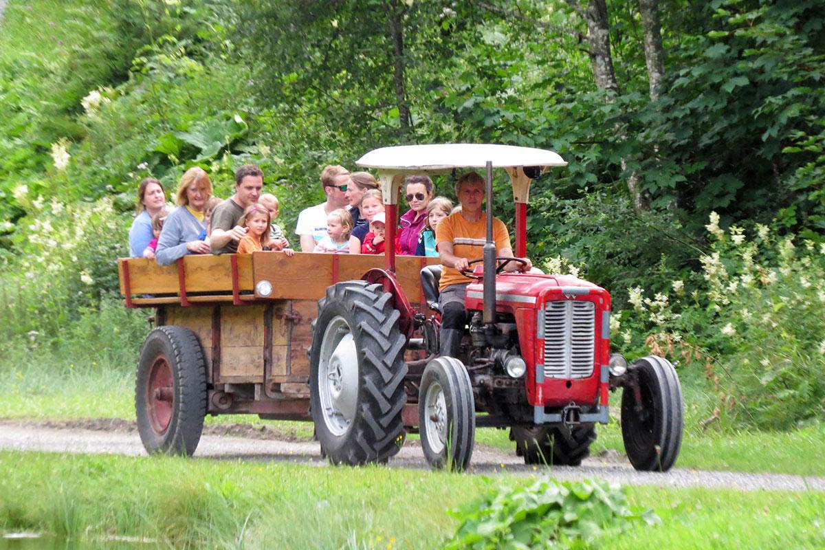 Ausflug mit dem Oldtimer-Traktor - Marchlhof