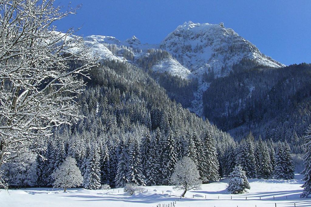 Winterurlaub & Bauernhofurlaub in Untertauern, Marchlhof