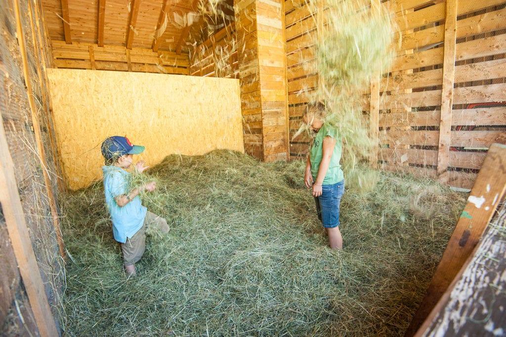 Kinderurlaub am Bauernhof in Salzburg, Untertauern