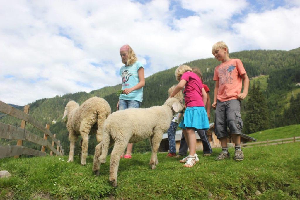 Kinderparadies · Bauernhofurlaub mit Halbpension am Marchlhof in Untertauern, Salzburger Land