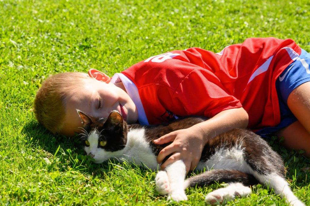Katze · Familienurlaub & Urlaub am Bauernhof Marchlhof in Untertauern