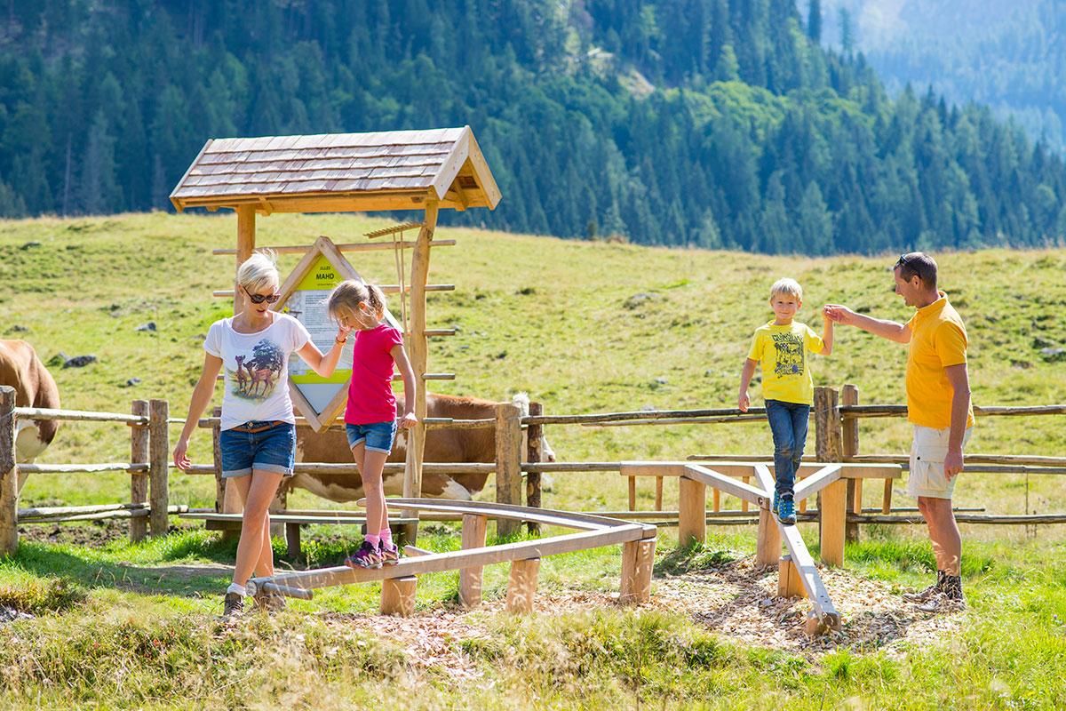 Familienwanderspaß Alles Alm auf der Gnadenalm, Obertauern